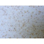 Kale MIKRO DREWA - мозаичная мраморная штукатурка мелкой фракции цвет 802 25кг